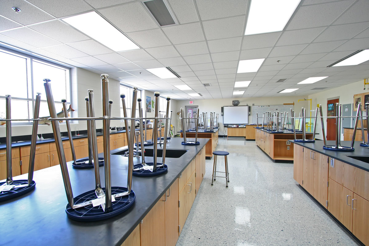 Austin Ellis Lab