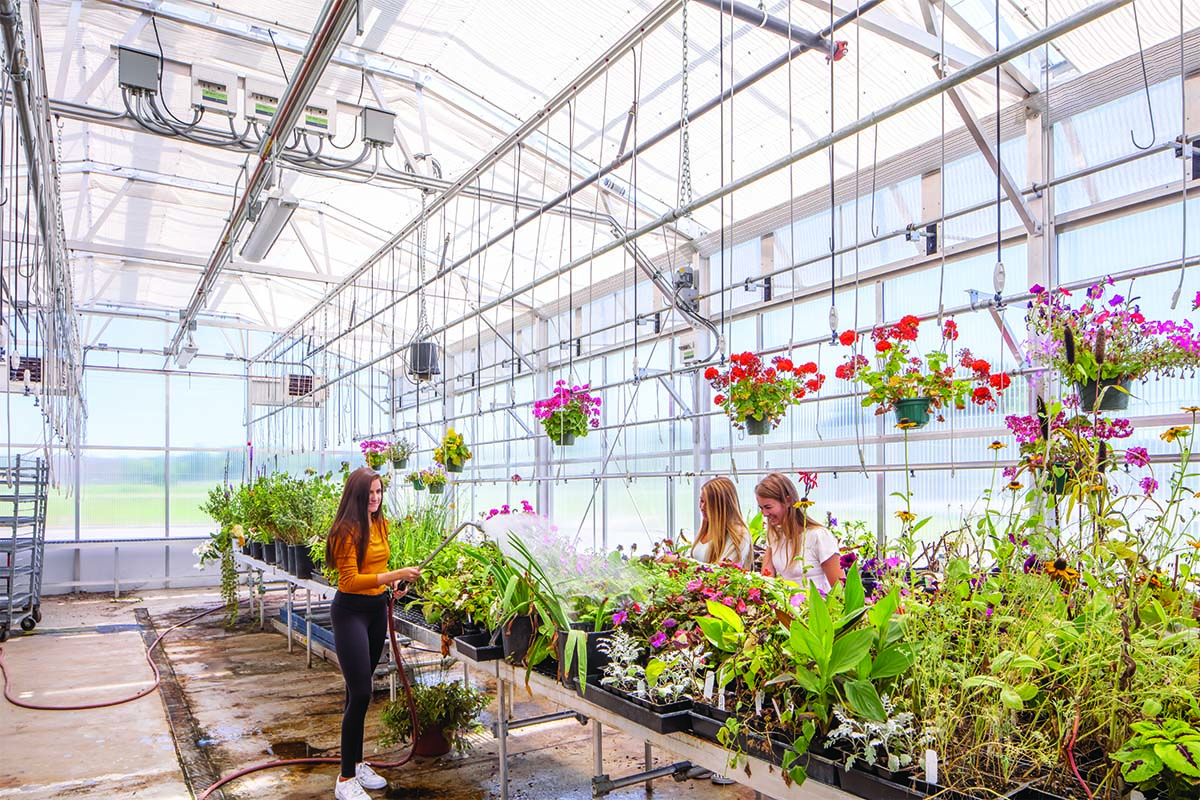 Forest Lake Area Schools Greenhouse